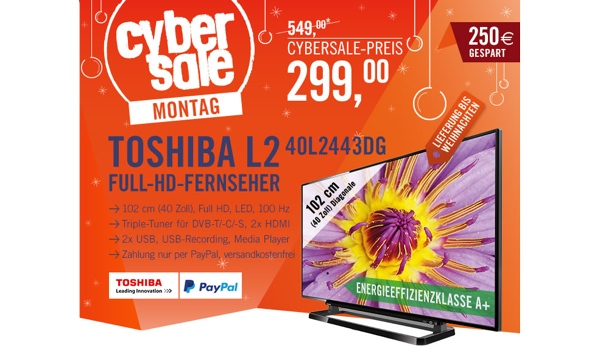 toshiba 40l2443dg 40 zoll led fernseher unter 300 euro. Black Bedroom Furniture Sets. Home Design Ideas